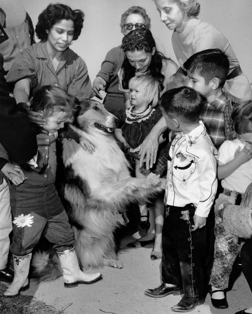Lassie – February 1963